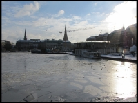 Icy lake with cranes and church steeples in the back ground - it yells GERMANY!