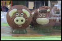 Chocolate Pigs...