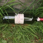 Plumbers drank my wine_ 2016