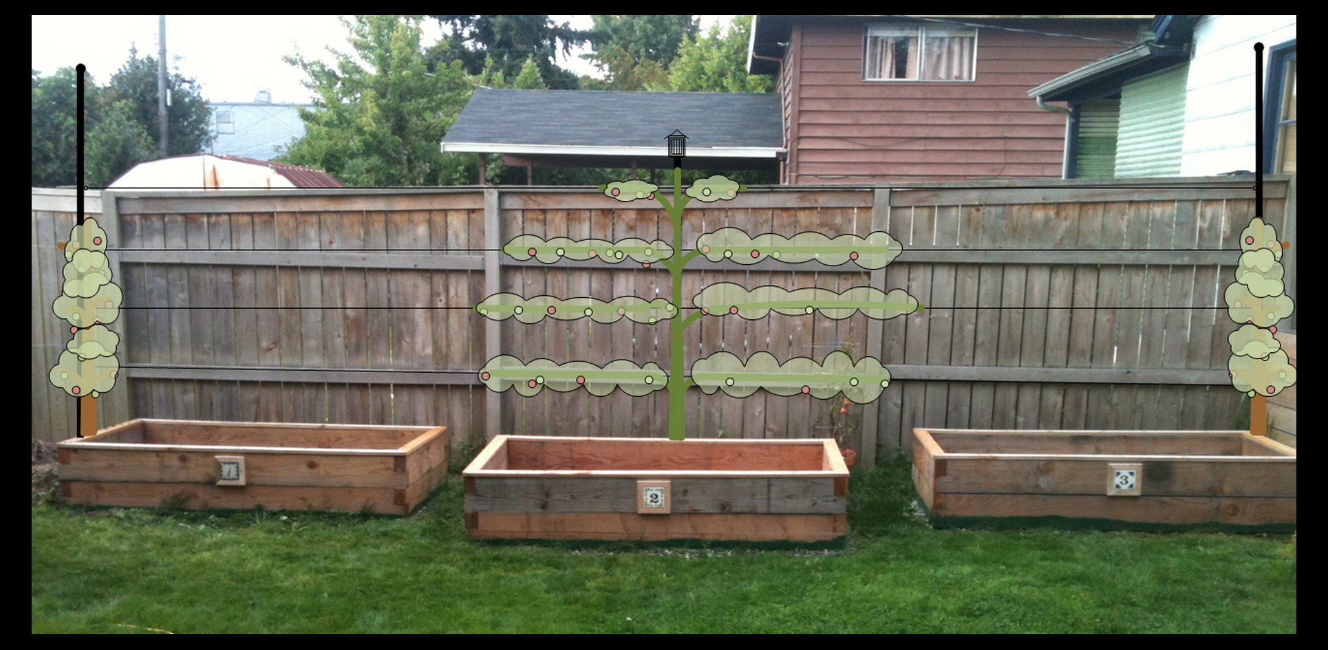 How To Build A Container Garden